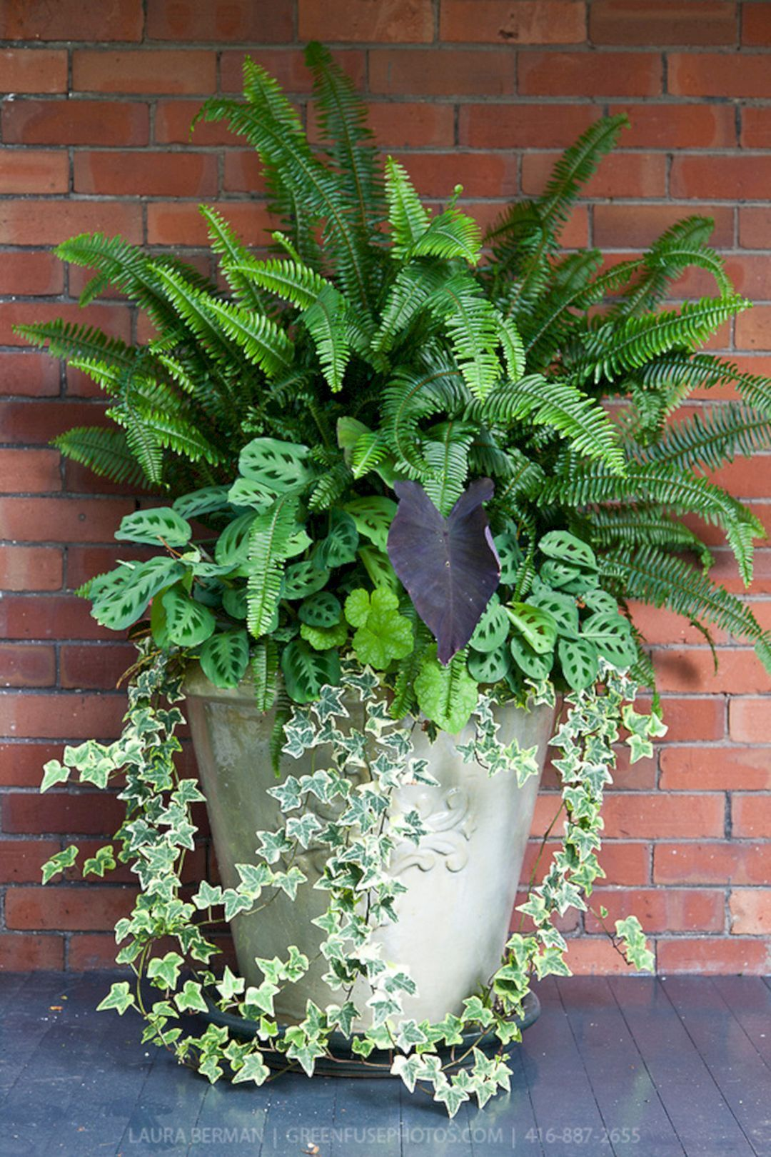 Front Porch Flower Planter Ideas 45 (Front Porch Flower Planter Ideas 45) design ideas and photos is part of Porch flowers, Front porch flowers, Container gardening, Container flowers, Container plants, Container gardening flowers - Front Porch Flower Planter Ideas 45