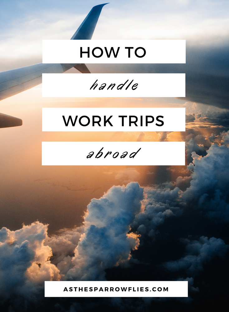 How to handle work trips abroad -  Work Trips Abroad   Travel   Travel Tips   Business Travel #traveltips #businesstravel Source by traveleira  -