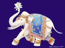 elefanten - Google-Suche