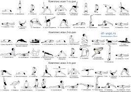 yoga iyengar posturas