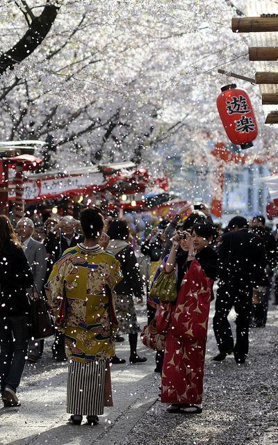 Festival de Kyoto, Japon.