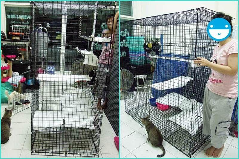 J9656693 ใครม ไอเด ย การทำกรงแมวราคาประหย ด ช วยบอกหน อย ใช ได แมวเล กย นแมวโต แมว แมว