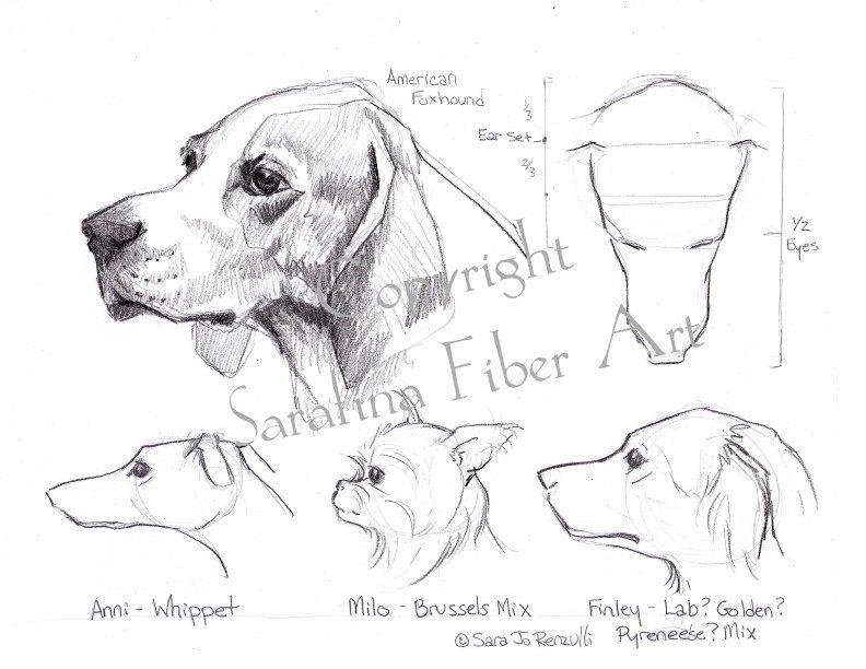 Dog Reference Chart PDF van SarafinaFiberArt op Etsy   绘画   Pinterest