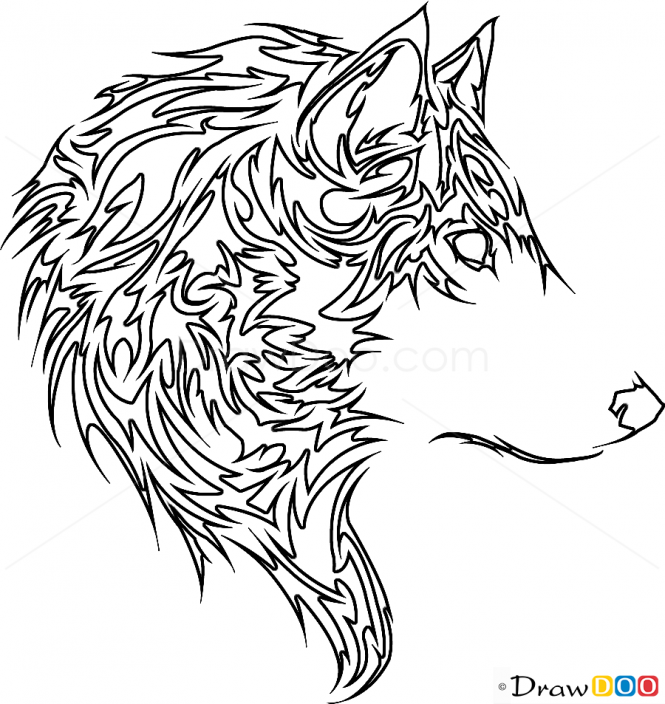 Wolf Line Drawing Tattoo : Wolf line drawing images google search wolves and