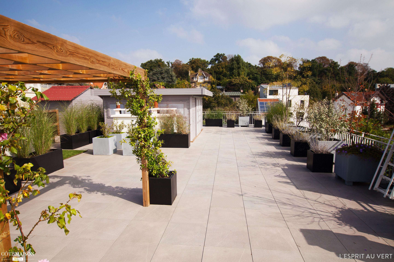 Grande Terrasse Verdoyante Sur Le Toit D Un Immeuble Terrasse
