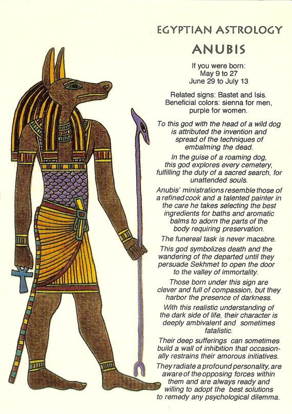 Vintage Egyptian Astrology Postcard Anubis From Zodiac Unlimited