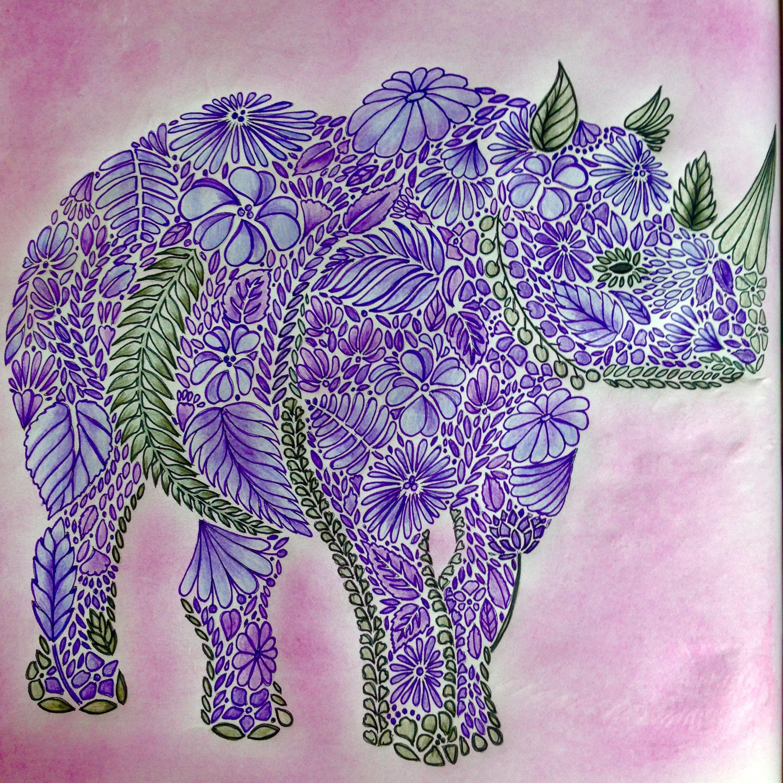Millie Marotta Animal Kingdom Millie Marotta Animal Kingdom Millie Marotta Marotta