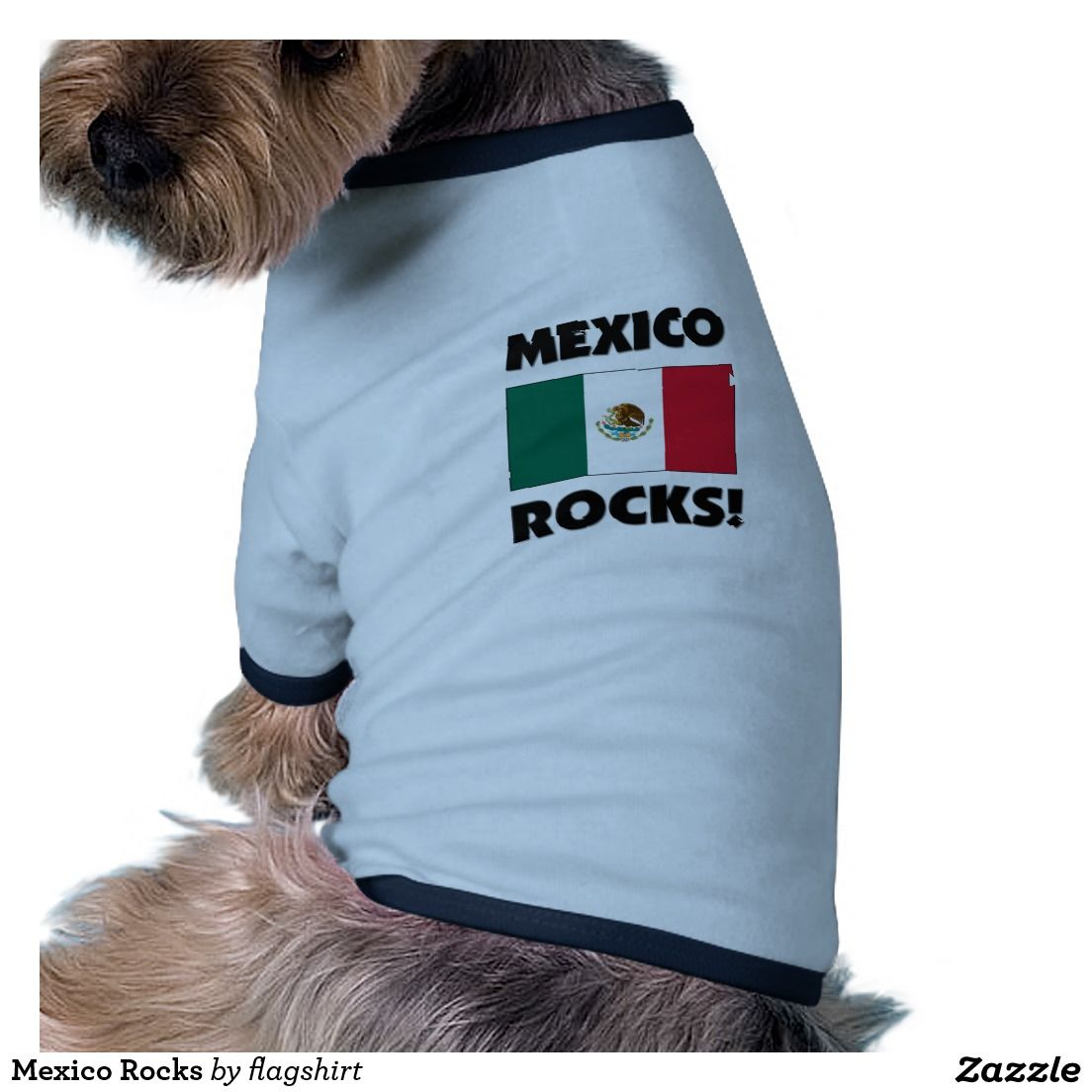 Mexico Rocks T-Shirt
