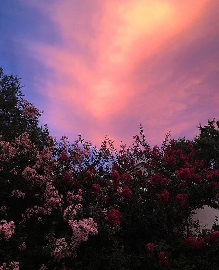 Pinterest   cosmicislander   sky   Sky aesthetic, Pretty ...