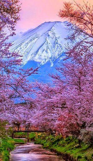 Mount Fuji ~ Honshu Island, Japan | Flickr - Photo by Shakira 71...✈...