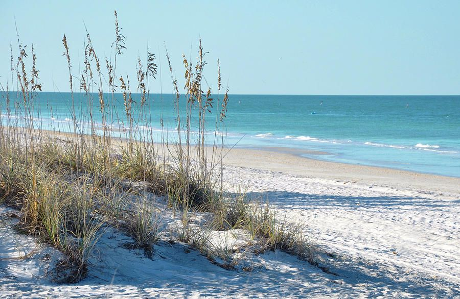 Florida Beach Scene By Rebecca Brittain