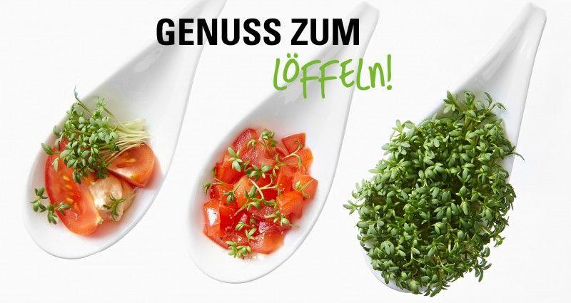 Gaumenschmeichler