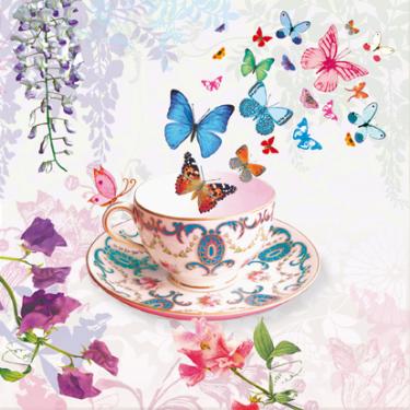 Clare Maddicott, papillon