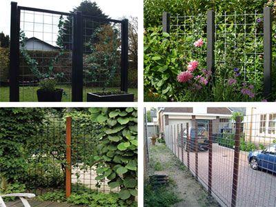 Rionet Hegn | Have | Haveideer, Hegn og Haver