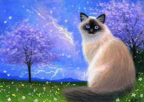 Ragdoll Himalayan Cat Stormy Spring Trees Lightning Oe Aceo Print Art Miniature Open Edition Aceo Print Title Stormy Sp Himalayan Cat Cat Artwork Cat Art