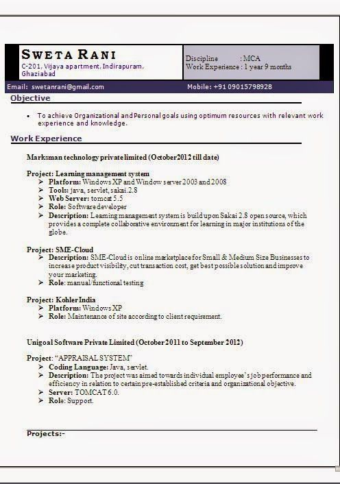2 Years IT Experience Resume Format Sample Template Example - resume format for mca