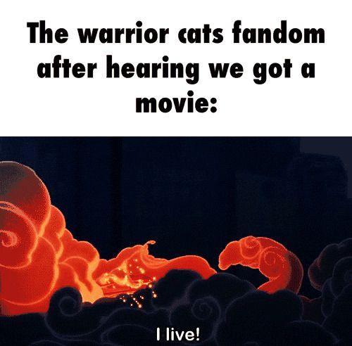 Warriors Book Series Movie: The Warrior Cats Fandom After Hearing We Got A Movie