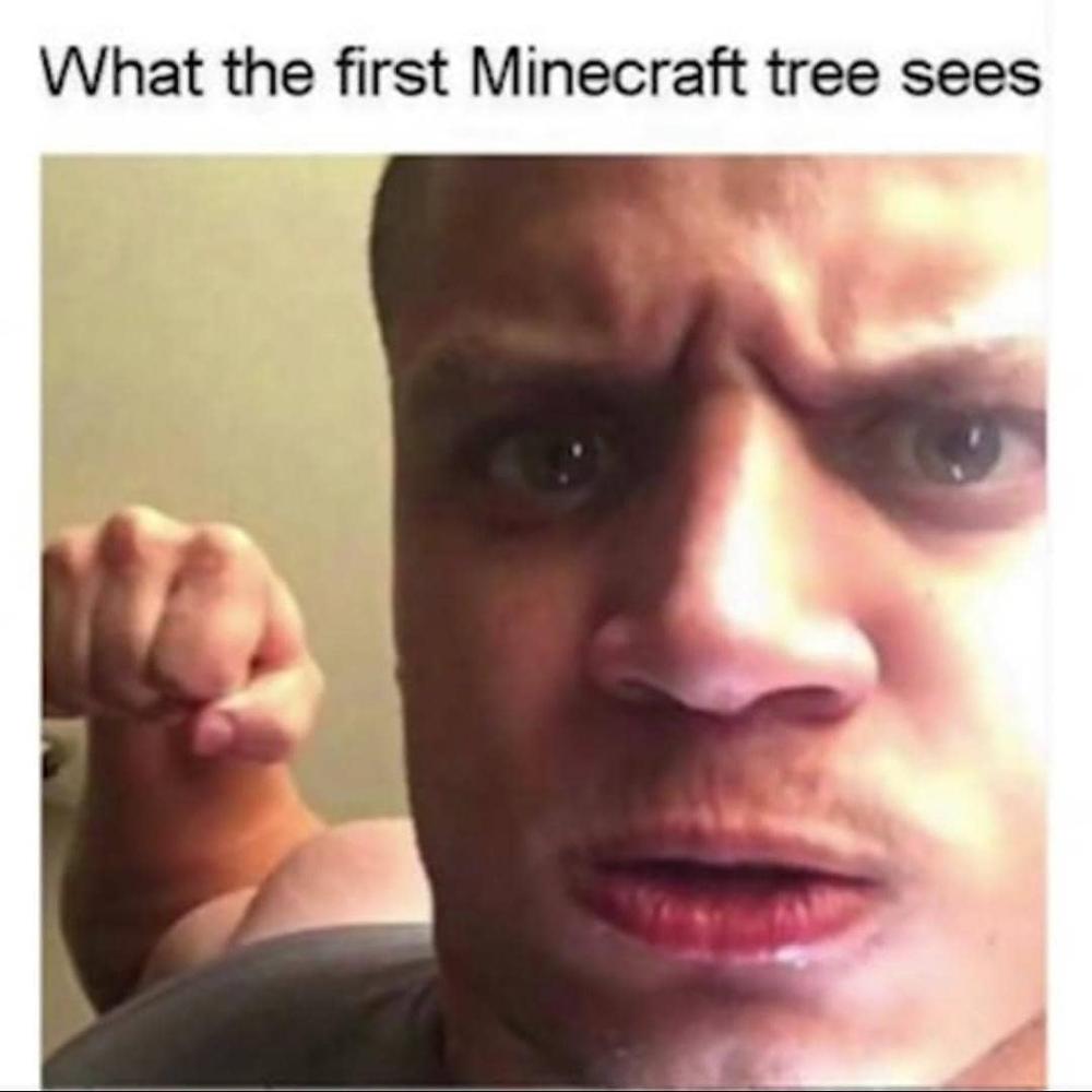 Dark Memes Reddit Foxydoor Com Dark Memes Funny Memes Funny