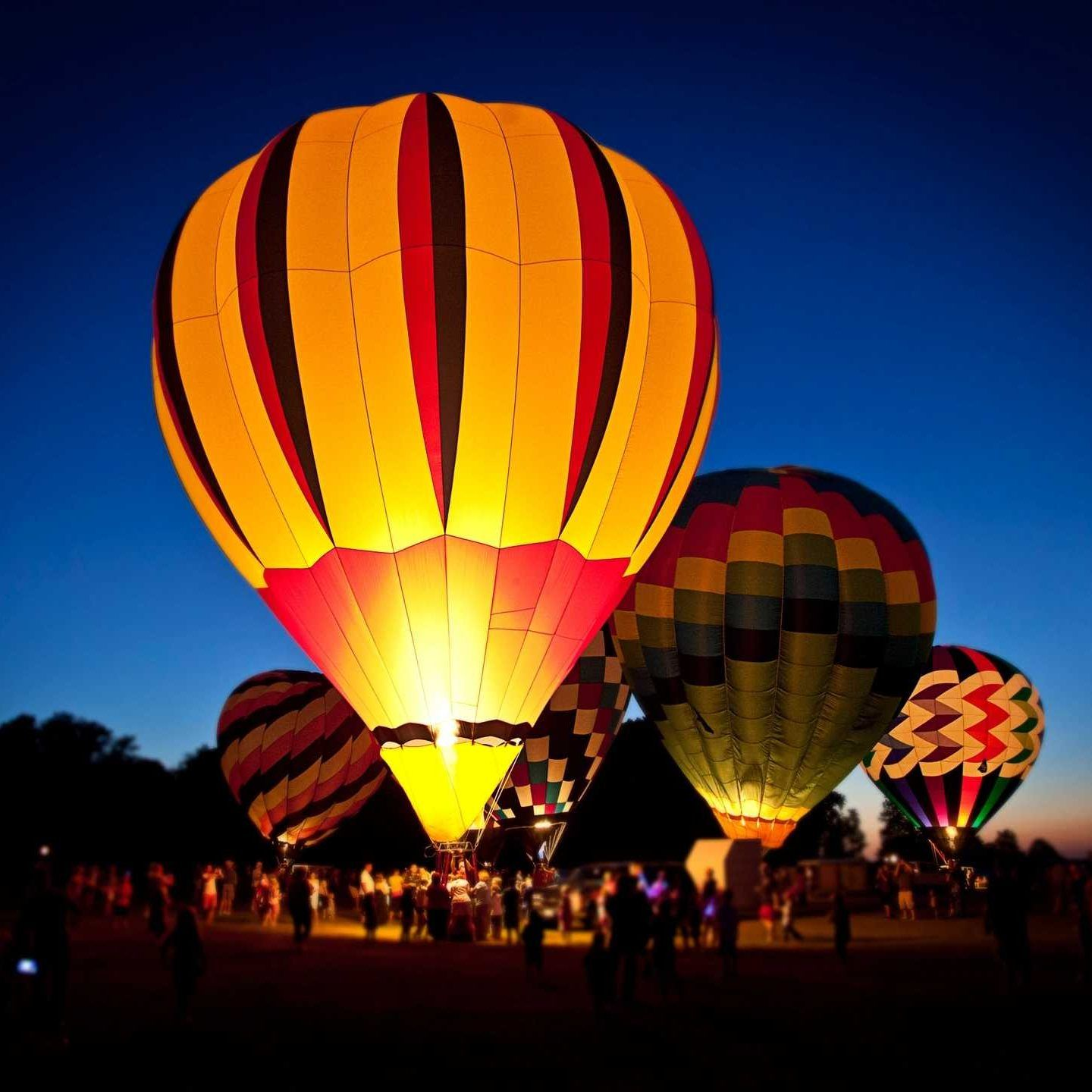 Sonoma Valley Balloons (look for Groupon) Balloons, Big