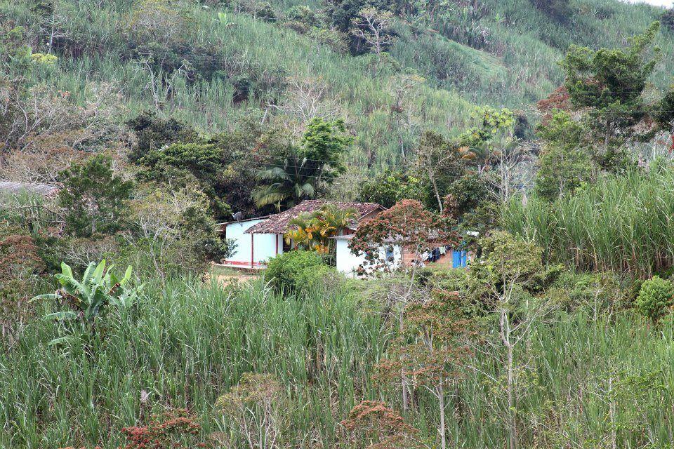 Yolombó es una tierra rica en grande zonas montañosas, hermosas praderas, quebradas con aguas cristalinas y miles de cosas hermosas que te puede ofrecer el campo y además es uno de los principales...