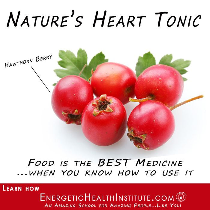 Energetic Health Institute Genesis Holistic Nutrition