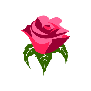 Graphic Design of Flower Clipart - Pink Rose with White Background