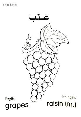 عنب Grapes Raisin رسومات خضروات وفواكه لتعليم التلوين مع الأسماء In 2021 Color Grapes Home Decor Decals