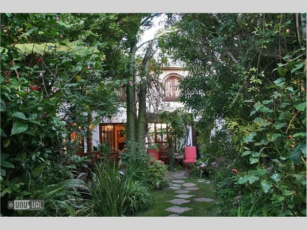 Prime Jambo Guest House Hotel In Cape Town Western Cape South Home Interior And Landscaping Ologienasavecom