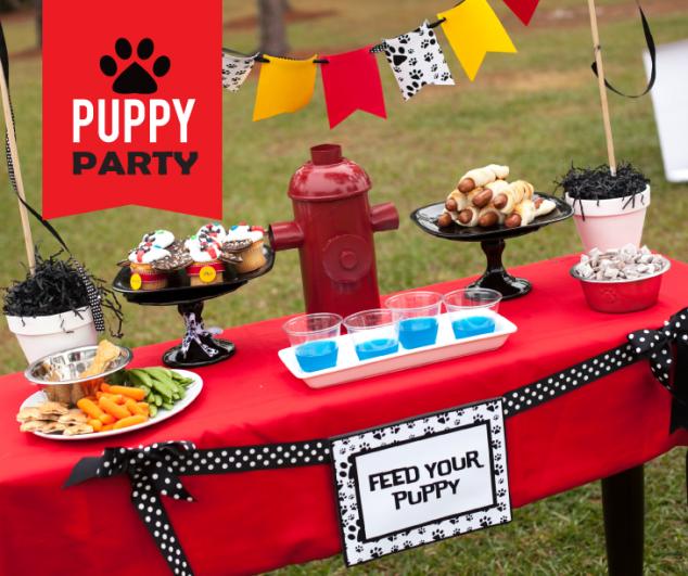 Best 25+ Puppy Birthday Parties Ideas On Pinterest