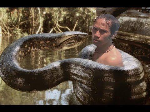 야생 동물 싸움 - 거대한 아나콘다 공격 인간의 진짜 싸움 | 뱀 대 인간 | - EXCLUSIVE 2016