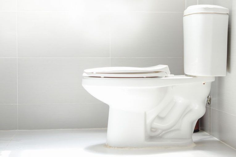 5 Best Toilet In The Industry Of 2019 Top Rated Toilets Reviews Flush Toilet Toilet American Standard