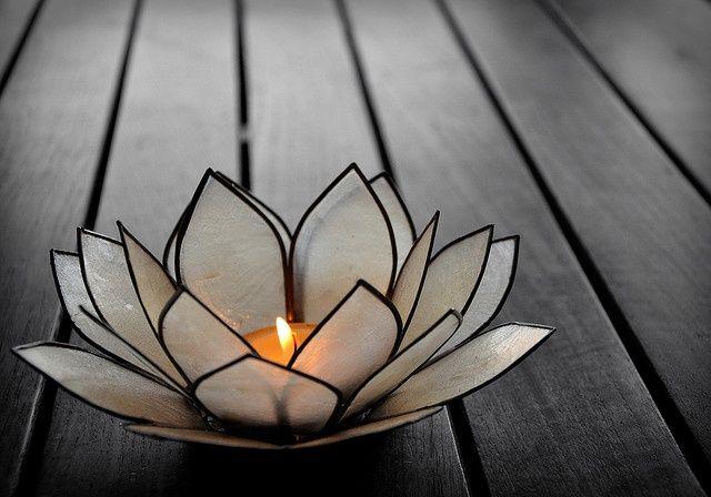 Candele fai da te con i fiori: scopri come fare il fiore di loto ...