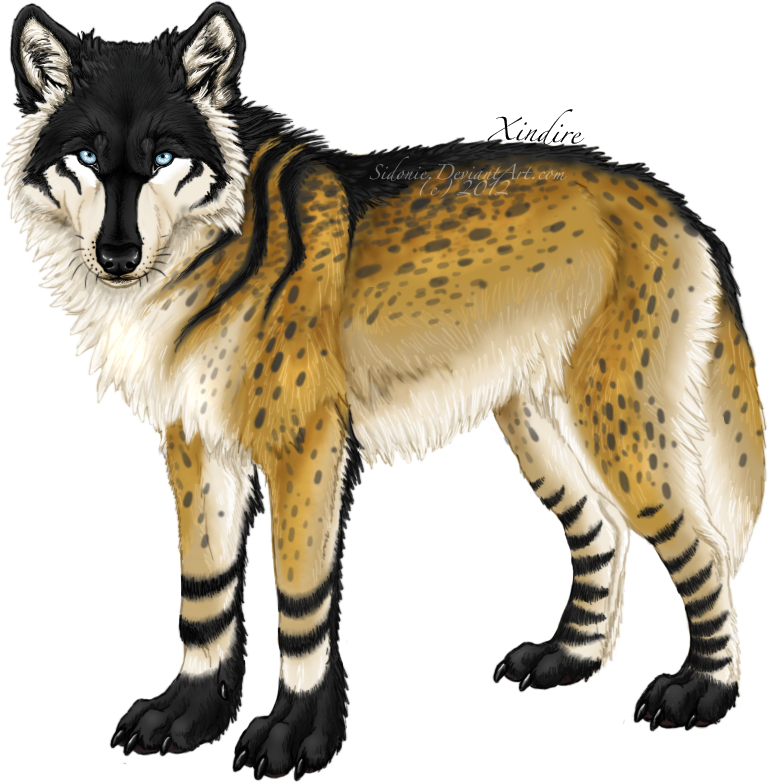 Xindire By Sidonie On Deviantart Cute Fantasy Creatures Wolf Art Fantasy Creatures