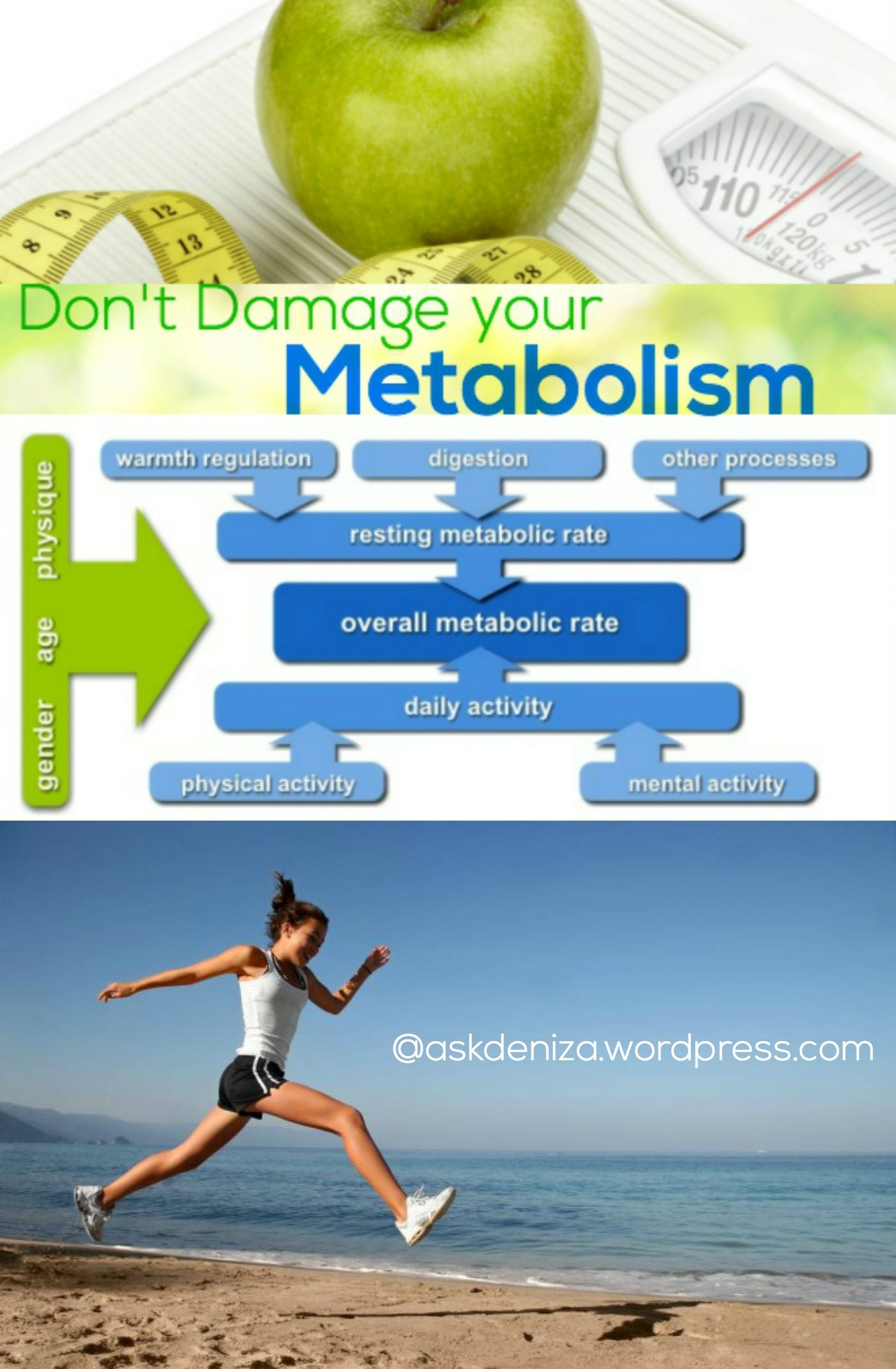 All about Metabolic Damage and how to avoid it. My guide