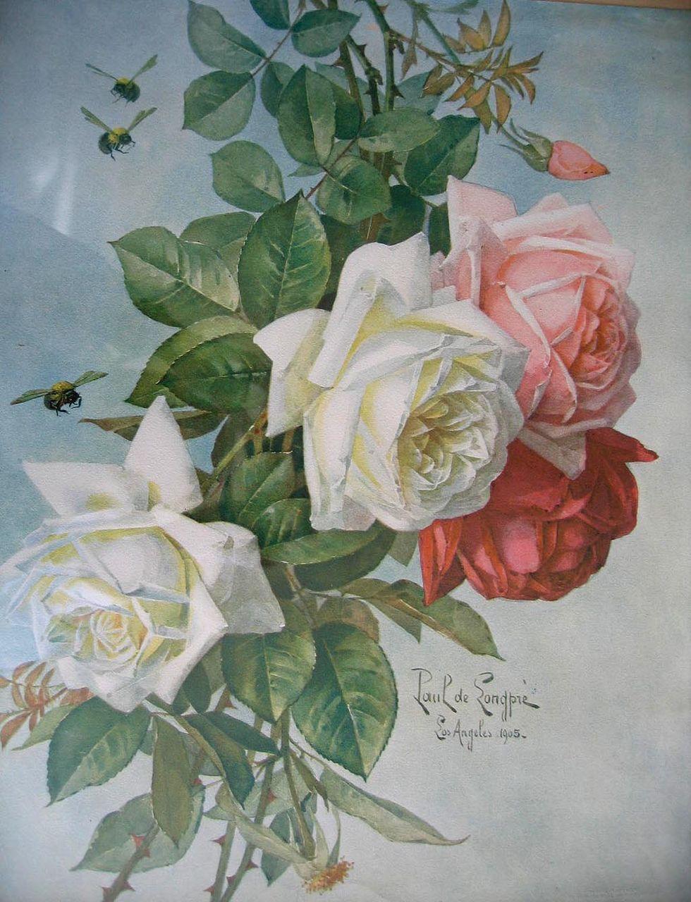 Art Print of Vintage Art Roses by Paul de Longpre