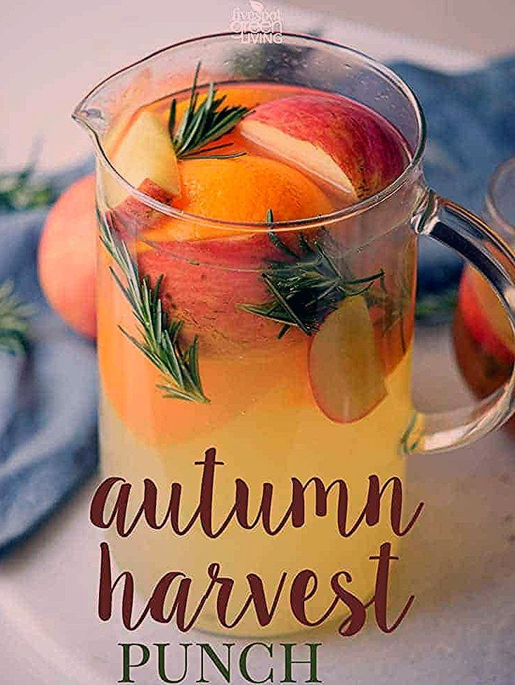 Autumn Harvest Thanksgiving Punch Mocktail is such a festive way to entertain any guests or family on a special day or a regular day! Put it in the crockpot or serve it cold. #autumnrecipes #fallmocktail #thanksgiving #fallpunch #healthydrink