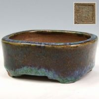 Antique pot  bonzai 24k yen Bonzai Network Japan