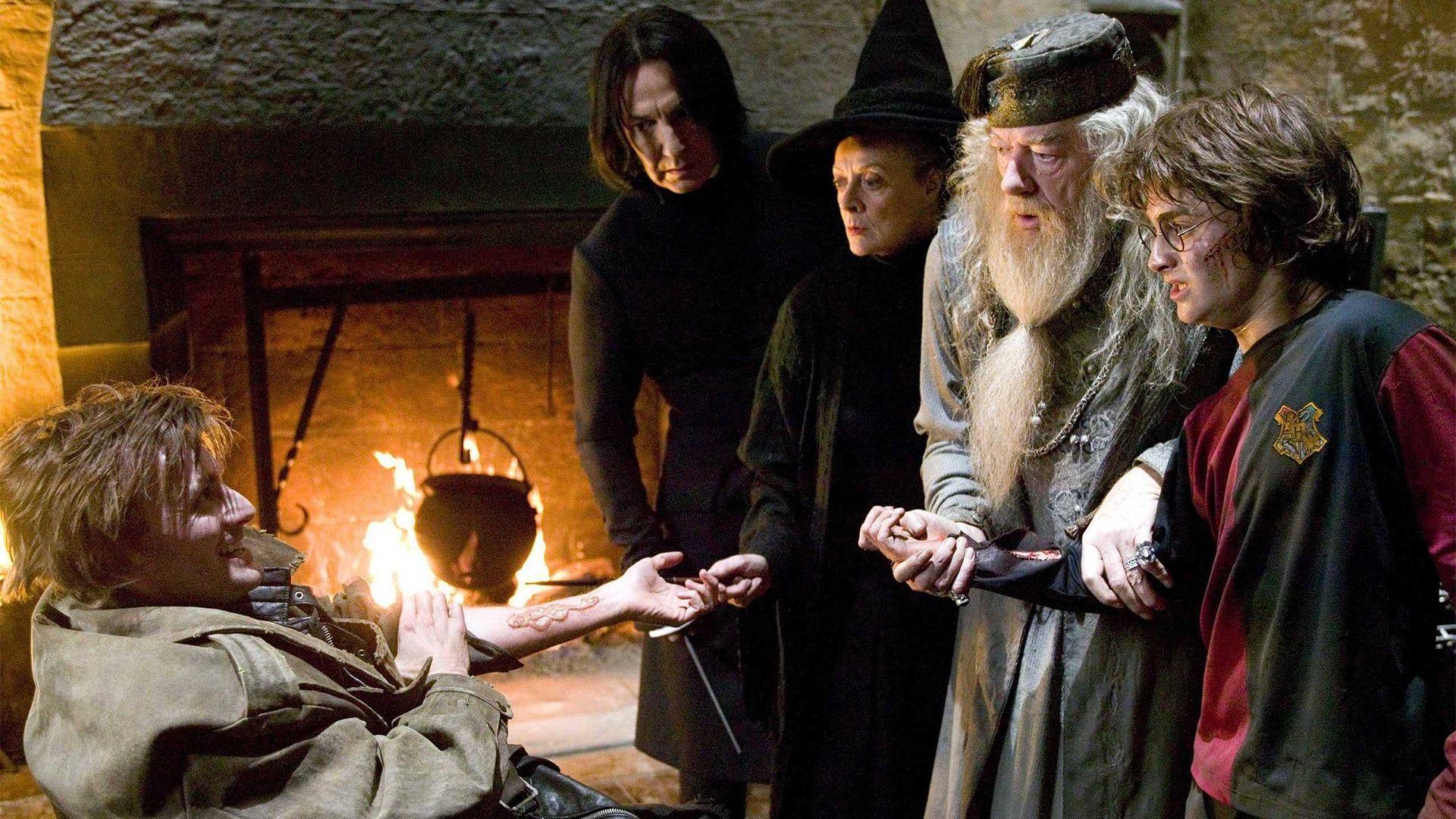 La Quatrieme Annee A L Ecole De Poudlard Est Marquee Par Le Tournoi Des Trois Sorciers Les Participa In 2020 Harry Potter Movies Harry Potter Universal Harry Potter