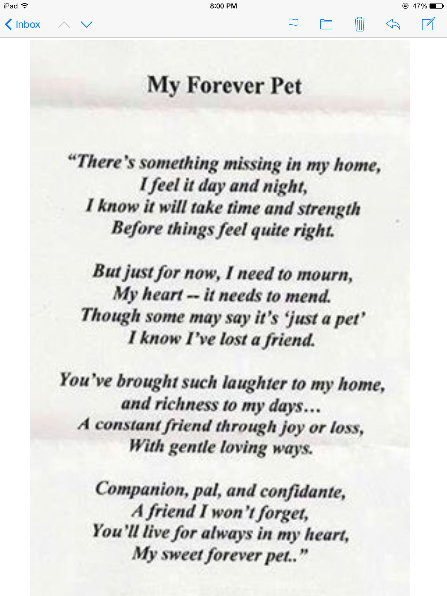 Pin By Teresa Philpot On Rip Pets Dog Poems Losing A Pet Dog Quotes