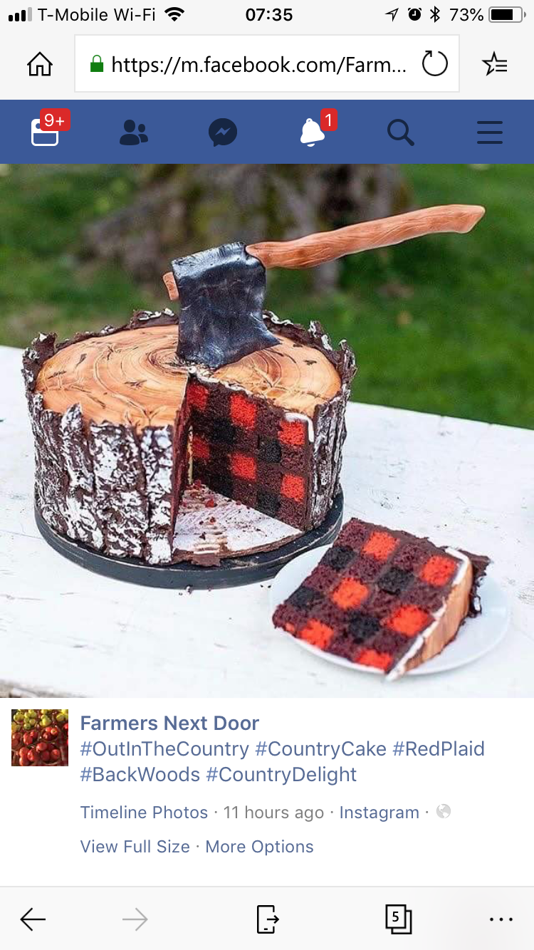 Flannel shirt birthday cake  I donut know any lumber jacks but this is really awesome