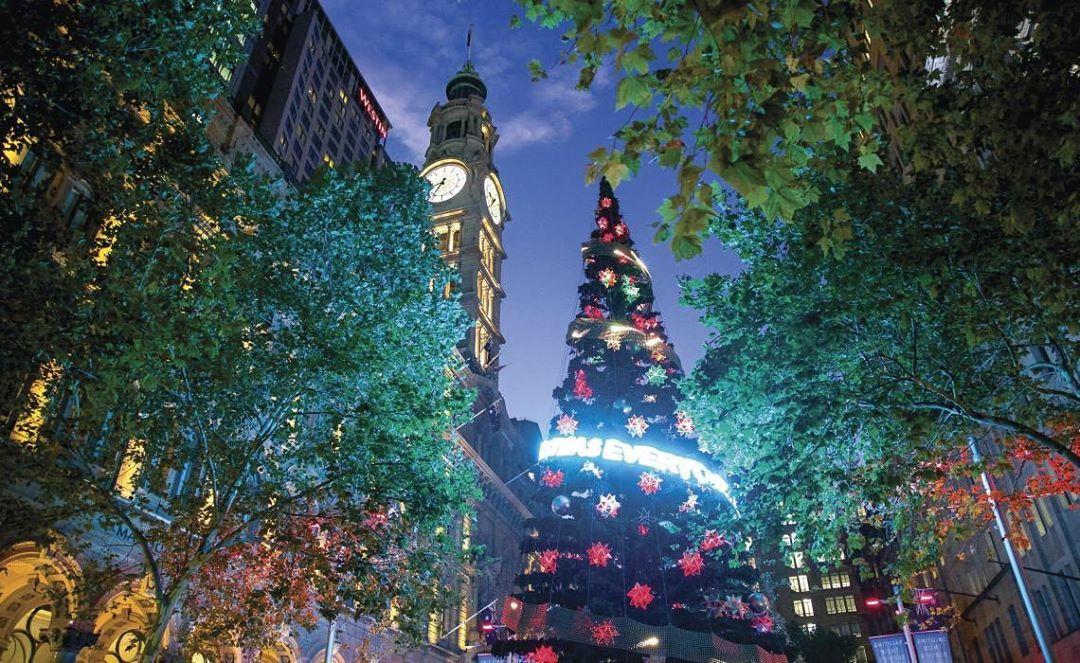 Christmas In Sydney Sydney Australia Christmas Christmasfest Street Lights Christmaslights Tree Christmastree Deco Decorate Christmasdecor Ch Sydney