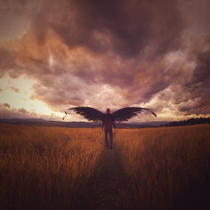 Dreamlike conceptual photography by Joel Robinson #wings #dreamlike #photos