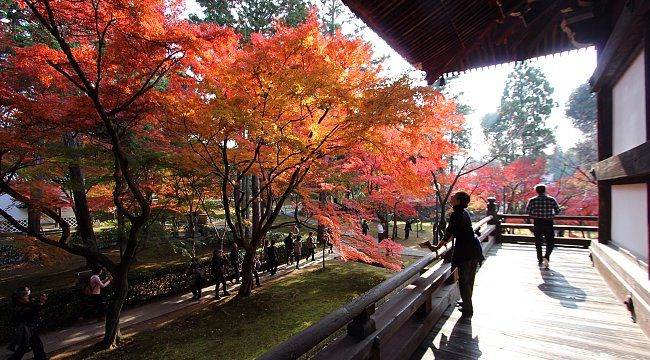 Kyoto East -  Shinnyodo Temple