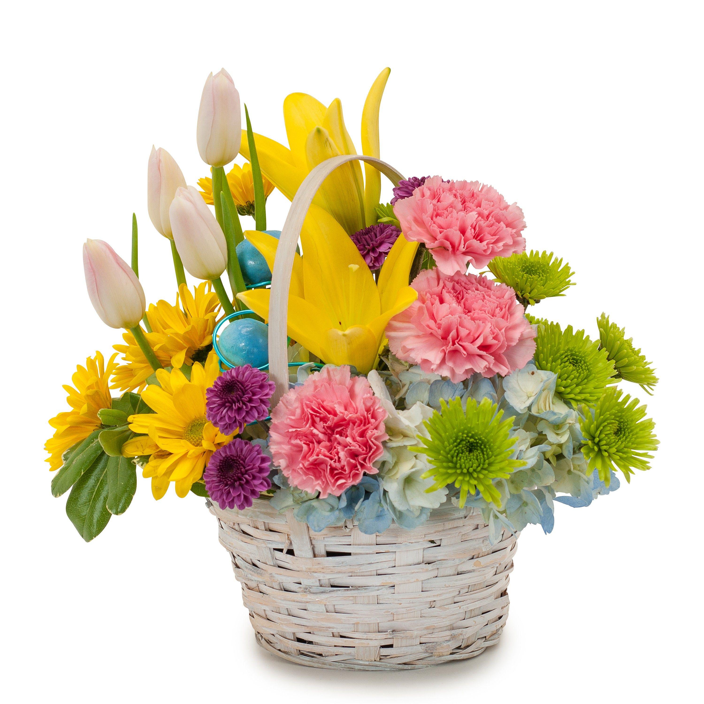 Allans flowers more easter flowers spring flowers