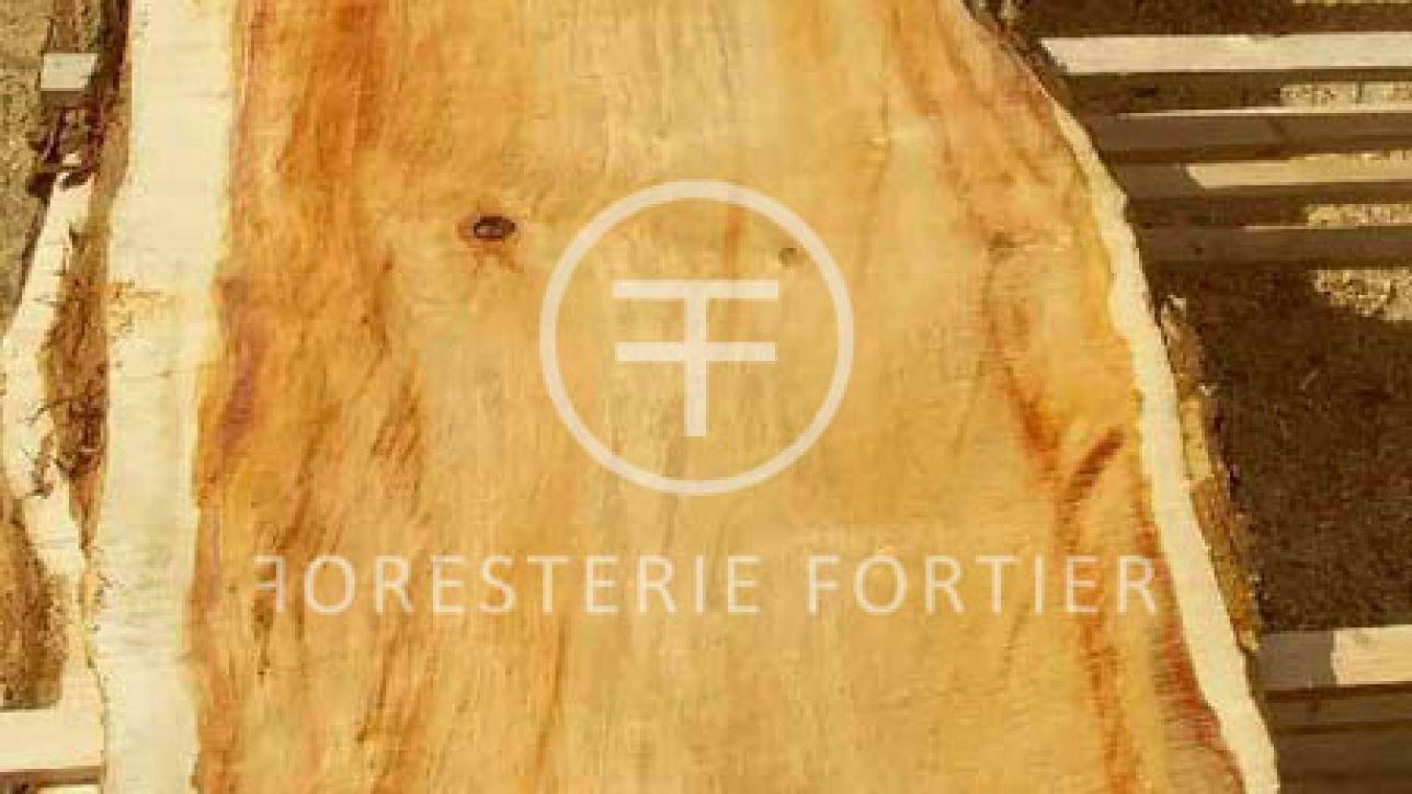 Table Tranche D Arbre A Vendre Quebec Entrepot Foresterie Fortier Planche De Bois Brut Plancher Bois Bois Brut