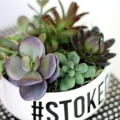 Make Your Own Simple Succulent Planters