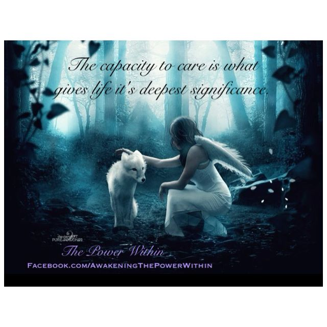 Love Fantasy Quotes: Pin By Amy Devine On Quotes & Sayings
