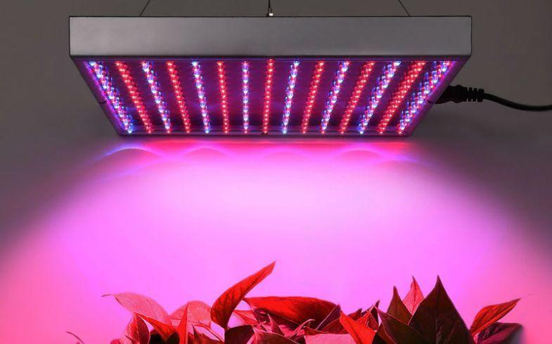 Full Spectrum Led Grow Lights Reviews 1000w Led Grow Light Led Grow Lights Grow Lights Indoor Plant Lights