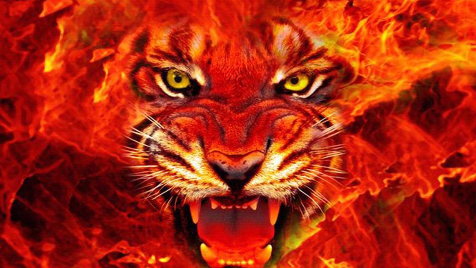 Ferocious tiger wallpaper Fire Flame Collection