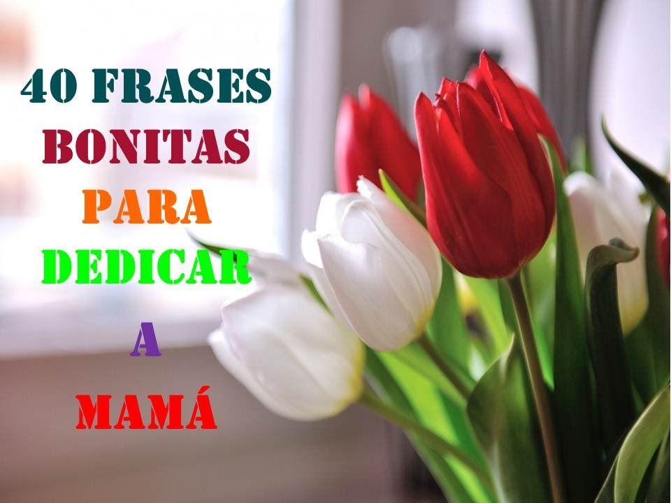 Frases Para Mama: 40 FRASES BONITAS PARA DEDICAR A MAMA